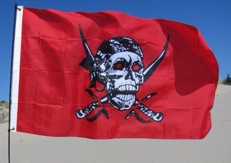red caribbean pirate sand rail flag
