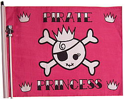 Pink Pirate Bicycle flag